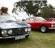Visiting Killarney - Alfa day